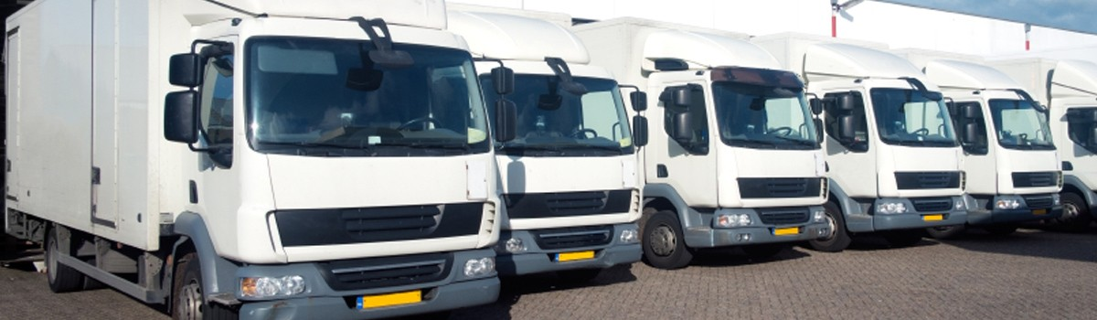 White Trucks Fleet
